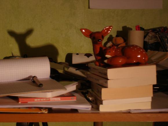 http://achanterezh.cowblog.fr/images/Images/DSC05661.jpg