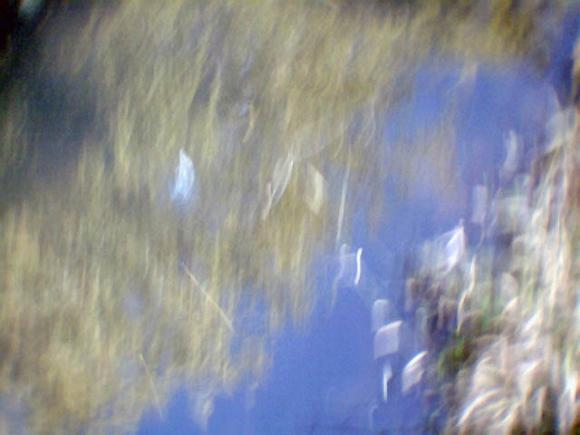 http://achanterezh.cowblog.fr/images/paysages170707013.jpg